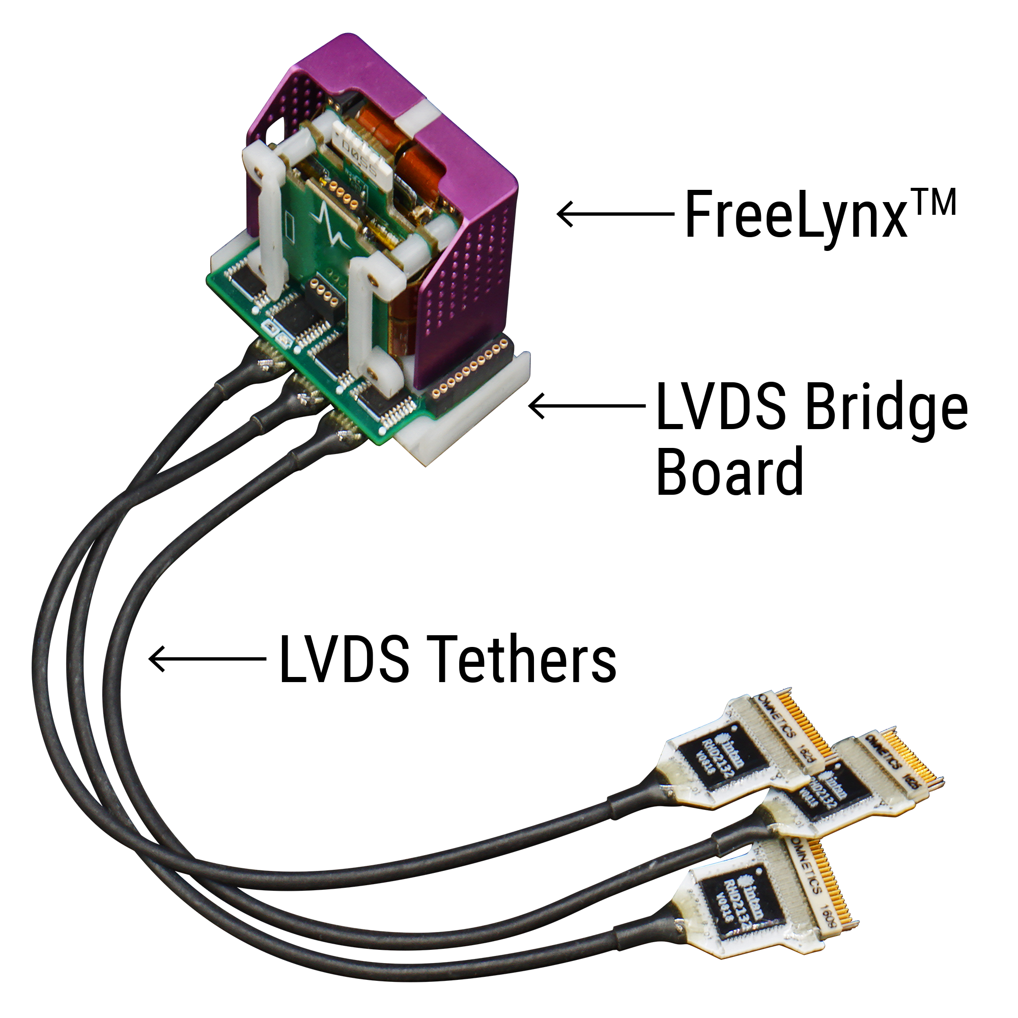 FreeLynx with 3 LVDS tethers for 96 neural probe channels