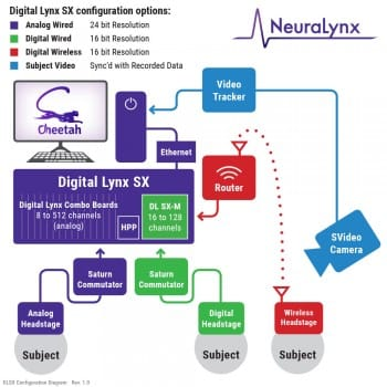 Digital Lynx SX recording diagram